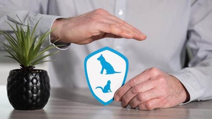 Die Tierhalterhaftpflichtversicherung